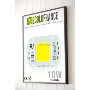 http://www.ecolofrance.com/708-thickbox/led-10w-direct-220v.jpg