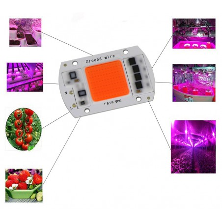 LED 50W 220v Full spectrum