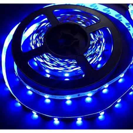 Bandeau LED 5M - BLEU - 12v