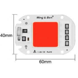 LED 50w rouge