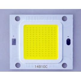 LED COB 100w (3000 - 3200k)
