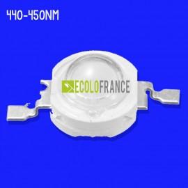 LED 5W 440-450NM