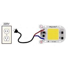 LED 50W 220v BLEU